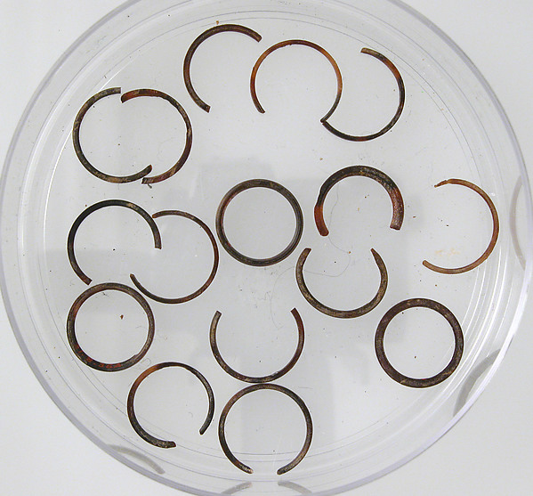 Rings and Ring Fragments