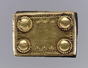 Gold Back Plate of Belt