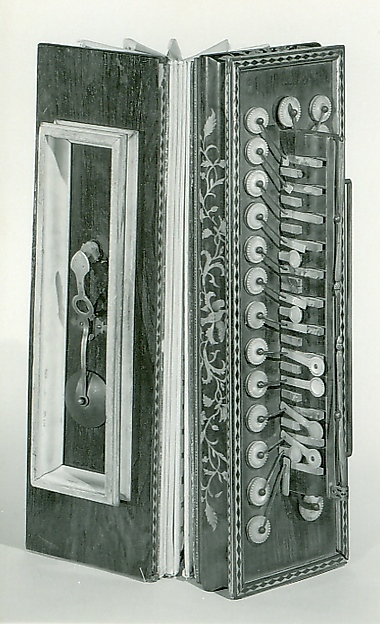 Accordion (Flutina)