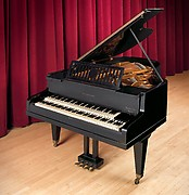 Grand Piano with Double Keyboard