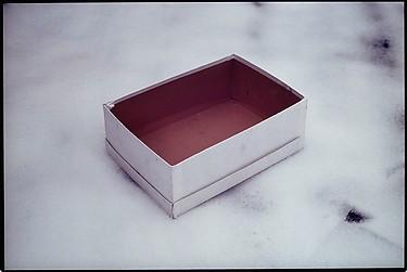 Caja vacia de zapatos