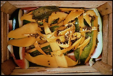 Ex-Papaya
