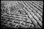 [Cobblestone Paving Detail, Possibly Brooklyn, New York]