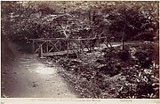 Colwyn Bay. Rustic Bridge in the Wood
