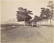 Caire. Allée de Pyramides