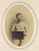 Stephen D. Wilbur