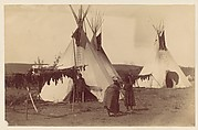 [Native American Woman in Camp with Racks of Drying Meat]