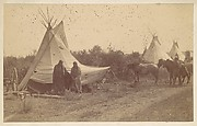 [Native American Women and Horses by Teepee in Camp]