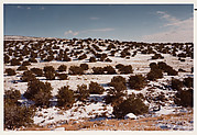 New Mexico Landscape #29A