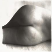 Nude No. 81