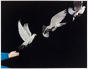 Harold Edgerton: Ten Dye Transfer Photographs