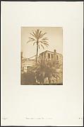 Dattiers et Maison du quartier Franc, au Kaire
