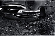 [Fender of Wrecked Car in Woods]