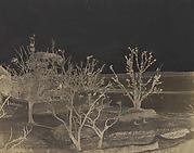 Suttee Ghat Cawnpore