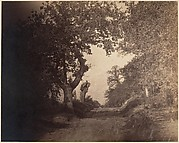 [Forest of Fontainebleau]