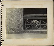 [Building Front Detail with Siamese Standpipe, New York City]