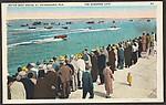 Motor Boat Races. St. Petersburg, Fla.