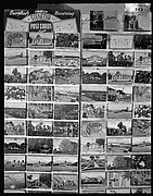 [Postcard Display, Florida]
