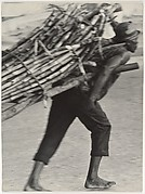 [Man Hauling Wood, Haiti]
