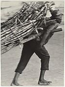 [Man Hauling Wood, Haiti]