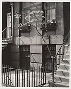 Brownstone in the Fifties