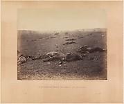 A Harvest of Death, Gettysburg, Pennsylvania
