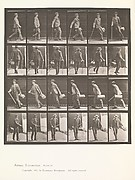 Animal Locomotion.  An Electro-Photographic Investigation... of Animal Movements.  Commenced 1872 - Completed 1885.  Volume VII, Men and Woman (Draped) Miscellaneous Subjects