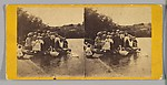 [47 Stereographic Views of Swans on Lake, Central Park, New York]