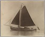 [Sailboat]