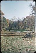 [493 Views of Golf Courses, for Fortune Article
