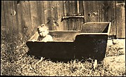 [Anita Skolle, Daughter of Hanns and Elizabeth Skolle, in Wooden Trough Before Barn Façade]
