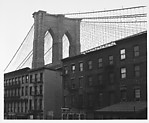 [View of Brooklyn Bridge Behind Tenement Houses]
