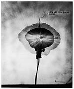 Double-Flash Photograph of a No. 8 Du Pont Dynamite Cap