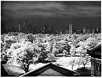 [Central Park from the Roof of the Metropolitan Museum of Art]
