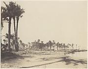 El-Nâcérah, Dattiers, Rives du Nil et Barques
