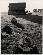 House, Stumps and Pasture, Mendocino, California