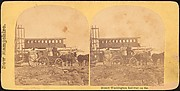 [Group of 9 Stereograph Views of Carriages, Stagecoaches, and Wagons]