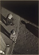 [Pedestrians at Curb, Seen from Above, New York City]