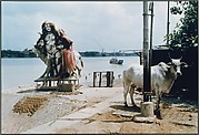 A Siva Image and a Cow, by the Ganges River, Calcutta