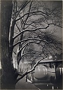 Les arbres des quais avec le Pont-Neuf
