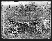 [Abandoned Wagon in Weeds, Somerstown Road, Ossining, New York]