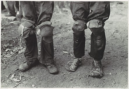 [Cotton Pickers with Knee Pads, Lehi, Arkansas]