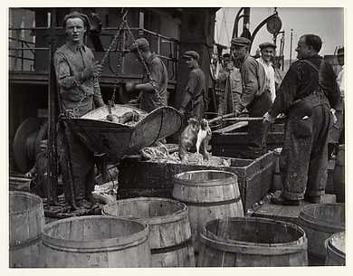 [Fishermen, Fulton Street Dock, New York]
