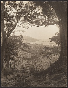 [View from Hillside Toward City and Harbor]
