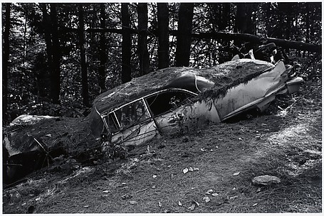 [Wrecked Car in Woods]