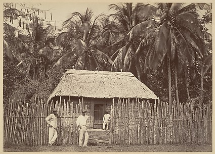 Tropical Scenery, Native Hut, Turbo