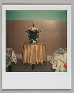[Floral Still-Life on Tabletop]