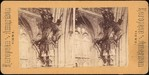 [Group of 14 Stereograph Views of Great Britain]