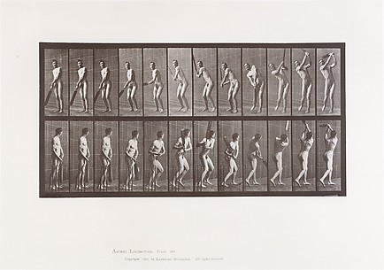 Animal Locomotion.  An Electro-Photographic Investigation of Consecutive Phases of Animal Movements.  Commenced 1872 - Completed 1885.  Volume II, Men (Nude)