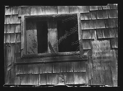 [Window with Torn Wire Fencing, Truro, Massachusetts?]